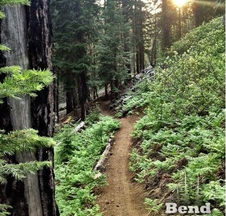 O curioso movimento de mountain bike em uma cidade do interior do Oregon nosEUA