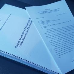 Projeto e Pedido de Protocolo